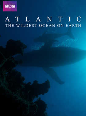 BBC纪录片《大西洋:地球最狂野的海洋 Atlantic: The Wildest Ocean on Earth》全3集 英语英字 720P